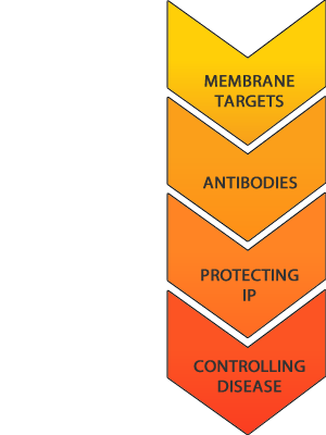 Welcome Receptor Antibodies Pty Ltd